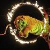 Цирки в Прокопьевске